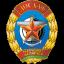 Віцебская абласная арганізацыйная структура ДТСААФ