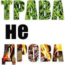 Палы и выжигание сухой растительности запрещены